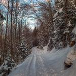 Winter Stock Package by Burtn