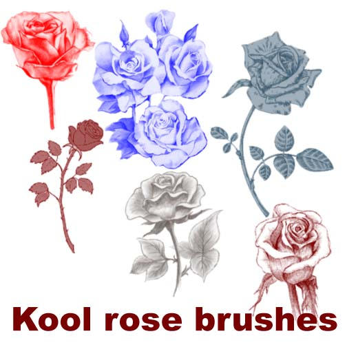 Kool rose brushes by koolprincein