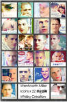 Wentworth Miller Icons