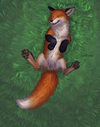 Happy fox by EosFoxx