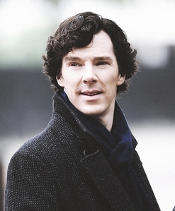 To a year of many murders (Sherlock x reader) by
