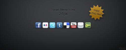 Social Media Icon Set by Zedj