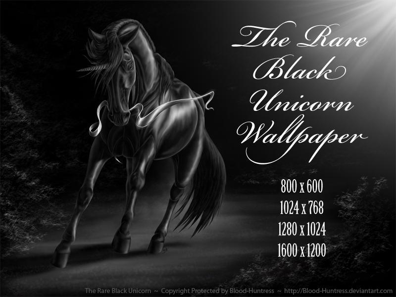 The Rare Black Unicorn Wallpaper Pack 2012 by Blood-Huntress