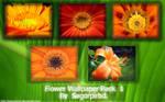 Flower Wallpaper Pack 1