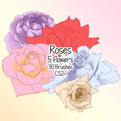 Rose Brushes by kabocha