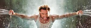 Wallpaper: Wolverine