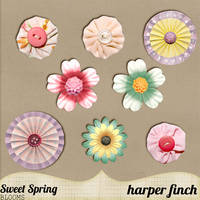Sweet Spring Blooms by harperfinch