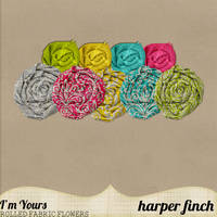 I'm Yours Damask Rosettes by harperfinch