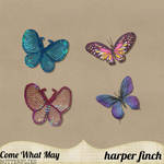 Come What May Butterflies