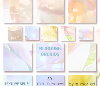 Blooming Orchids by le-mot-art