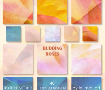 Budding Roses by le-mot-art