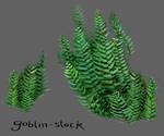 Ferns_cutout