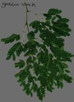 Branch 2 by GoblinStock