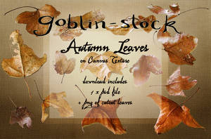 Autumn Leaves on Canvas_Pack