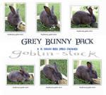 Grey Bunny Pack by GoblinStock