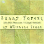 Sunny Forest Texture Set