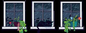 |F2U| Windows (Rain) [NEW]