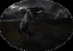 Storm bringer (AT)