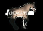 Adonis Rear (animation)