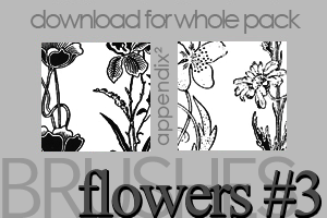 Brushes - Flowers 3 by Pinkly-Icons