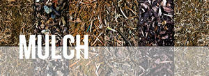 Mulch Texture Set