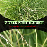2 Green Plant Textures
