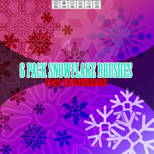 6 pack snow flake brushes