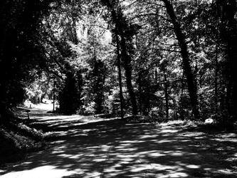 Shadowed Street by DorektheAncient