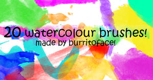 20 WATERCOLOUR BRUSHES