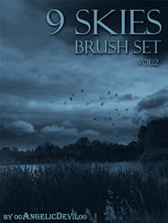 9 Skies brush set vol.2