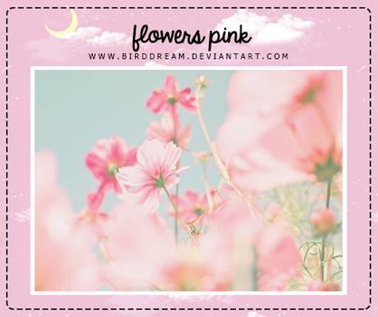 Flowers pink wallpaper.