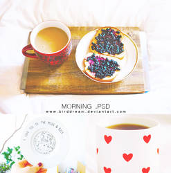 Morning .psd by BirdDream