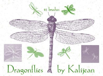 Dragonflies by kalijean