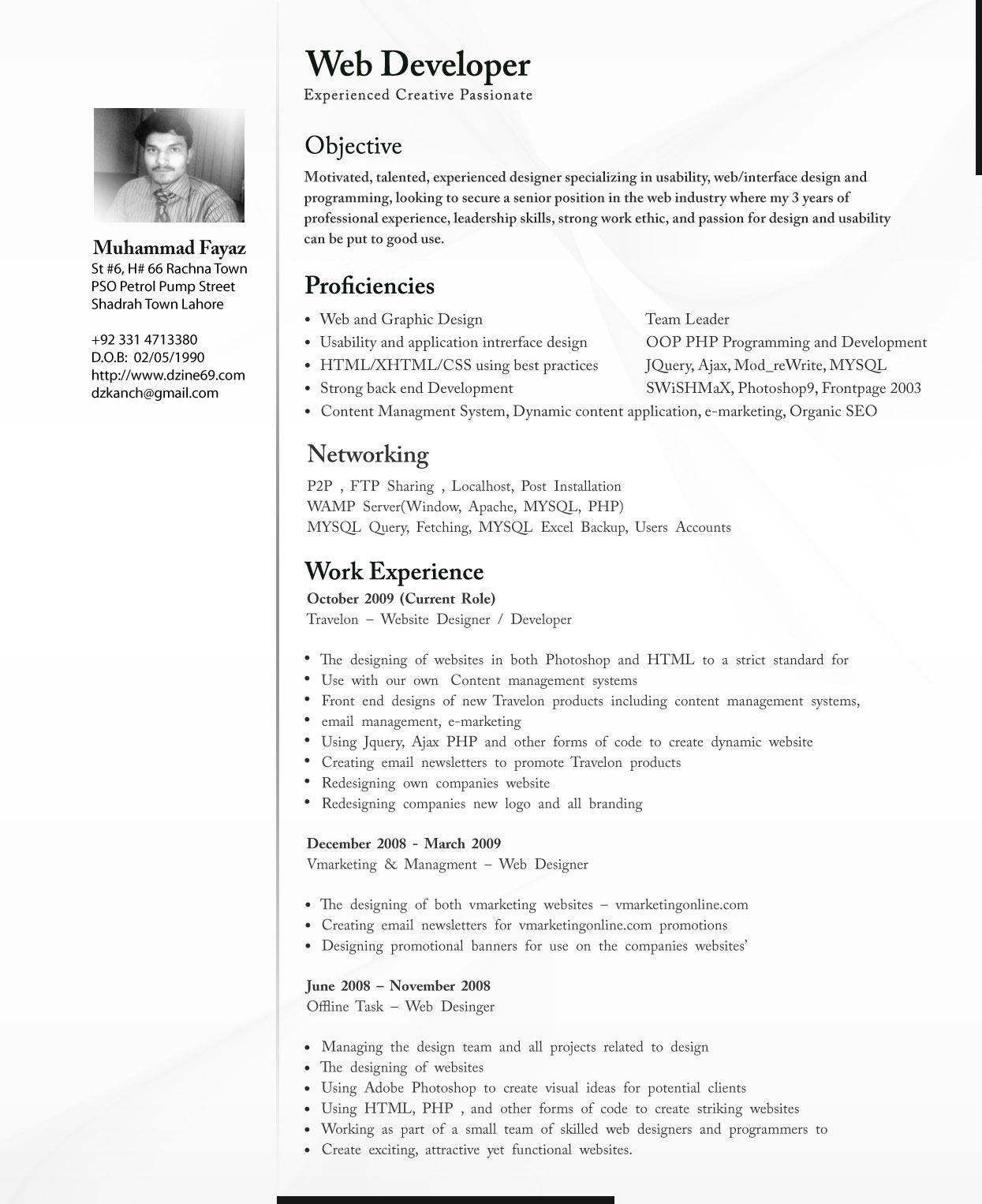Cv for professional – Professional CV