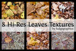 Hi-Res Leaves Textures