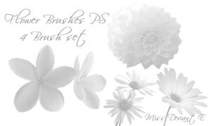 Flower Brushes PS