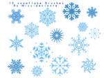 15 SNOWFLAKE BRUSHES