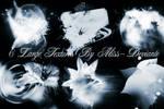 6 Flower Textures
