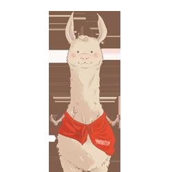 Llama by Yumiitsu