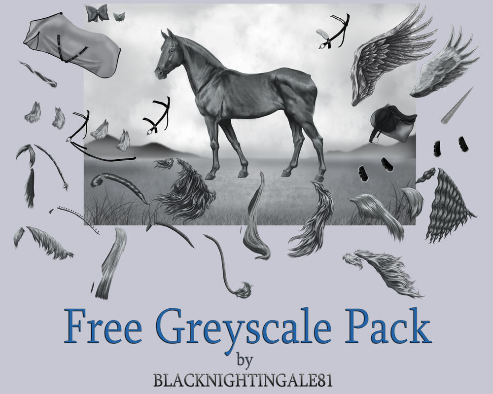 FREE Horse Greyscale Pack by BLACKNIGHTINGALE81 by ...