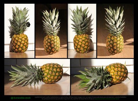 Pineapple Stock Pack