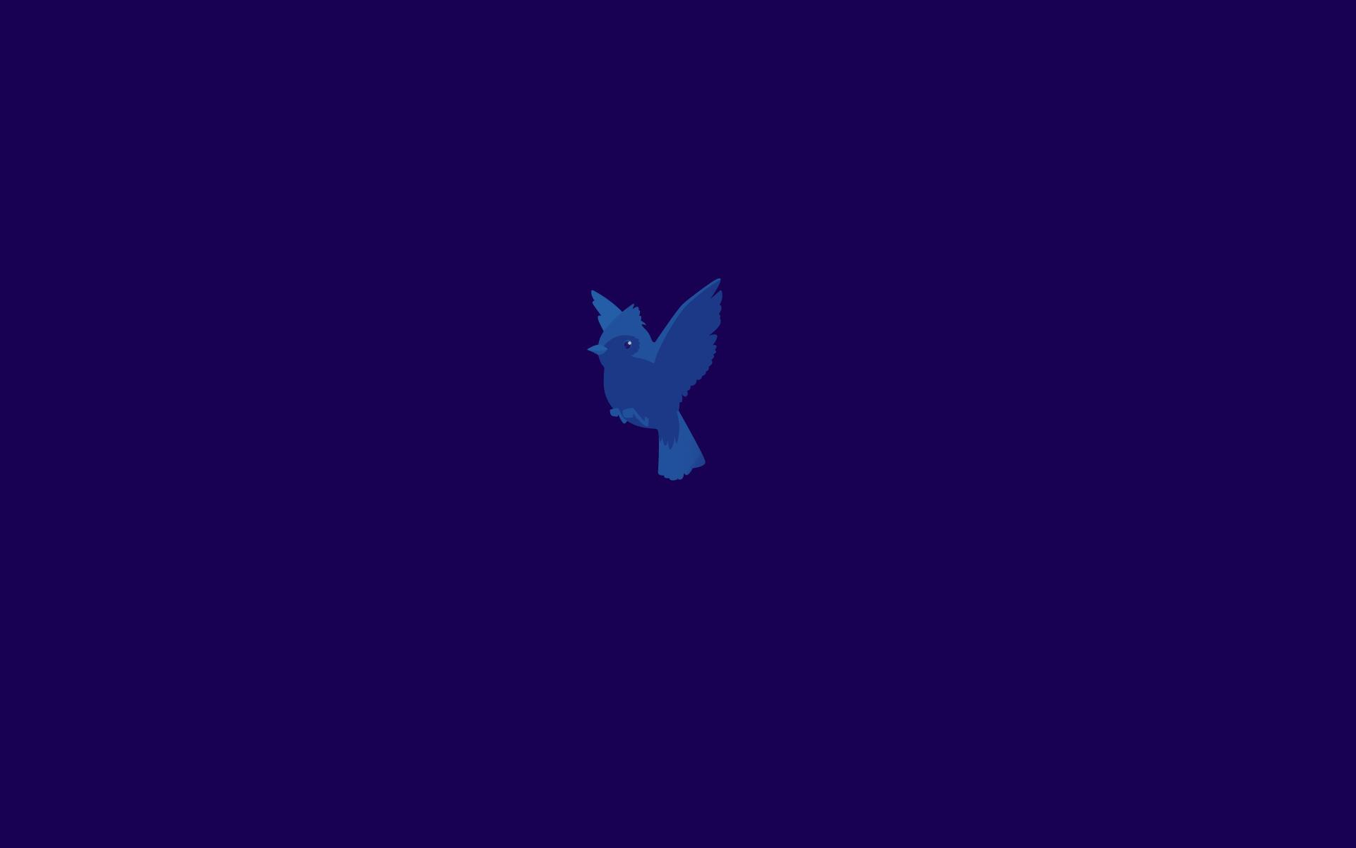 Good Wallpaper Naruto Blue - windows_8_pro_start_wallpaper_3___blue_bird_by_brebenel_silviu-d5a2pzm  HD_371956.jpg