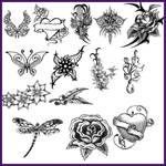 Brushes-Tattoos-Garden1