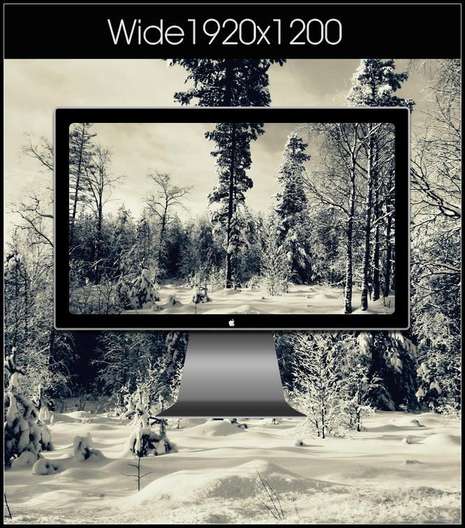 winter2 by SABBAT2010