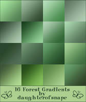 Forest Gradients by daughterofsnape