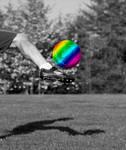 Rainbow Kick by Ommin202