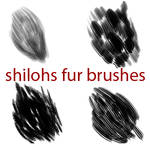 Shilohs Free Fur Brushes
