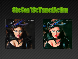 SheCan'tBeTamedAction by thisisthenight
