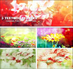 [Resources] 5 Textures Flower - Pack 1