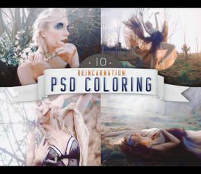 PSD #10 [Reincarnation]